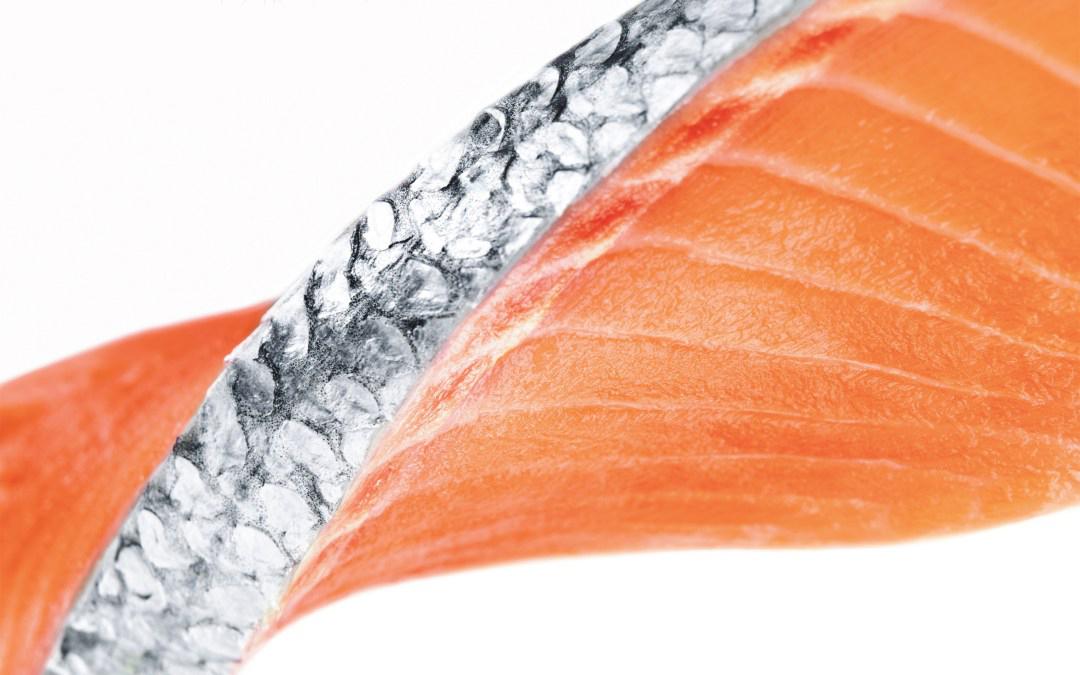 Aviva Drive App >> Ora King Salmon | New Zealand Salmon Co