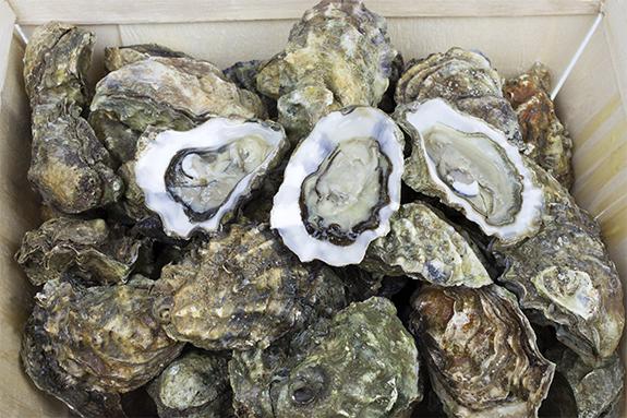 Aviva Drive App >> West Mersea Oysters