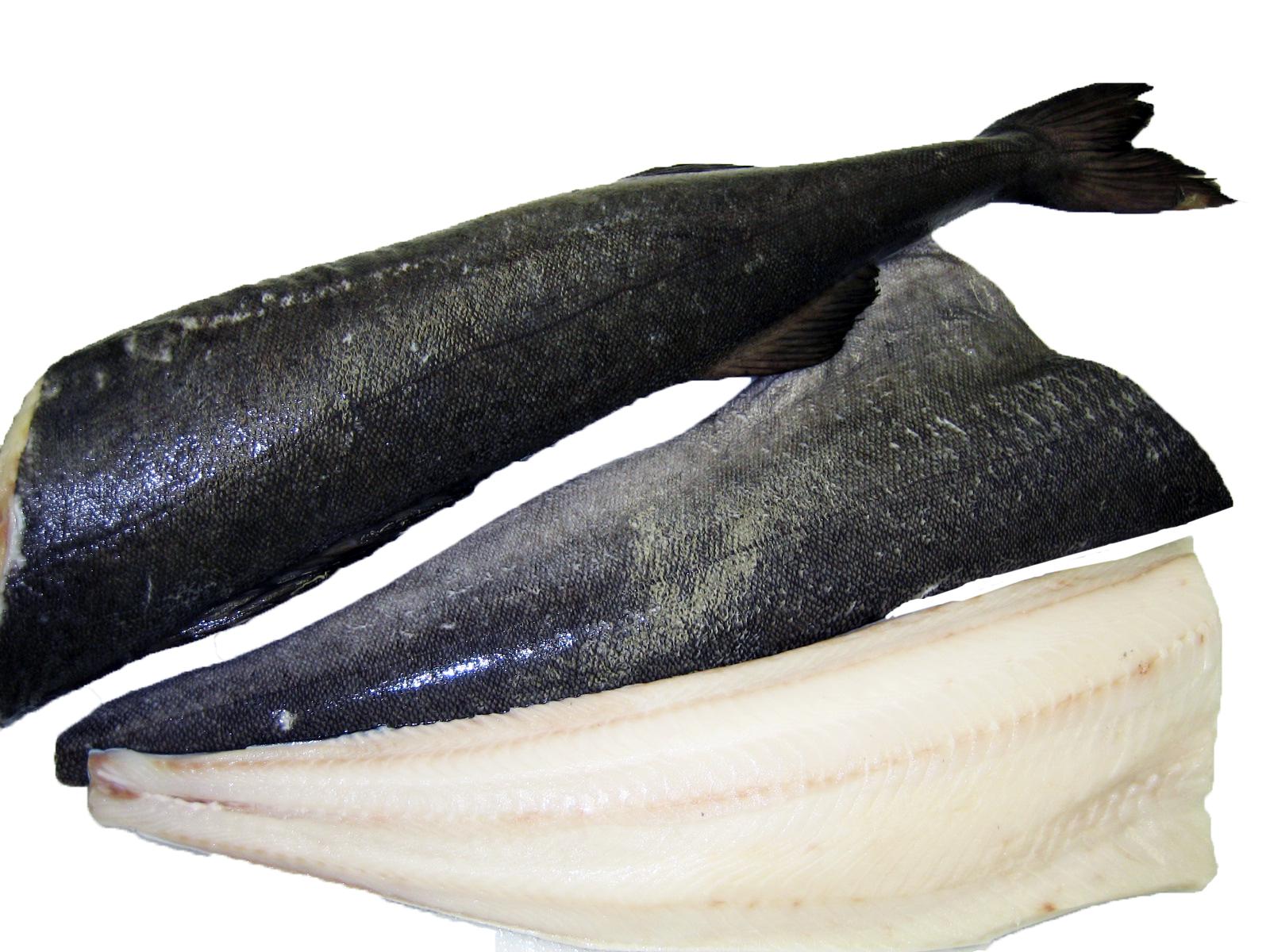 black cod sablefish