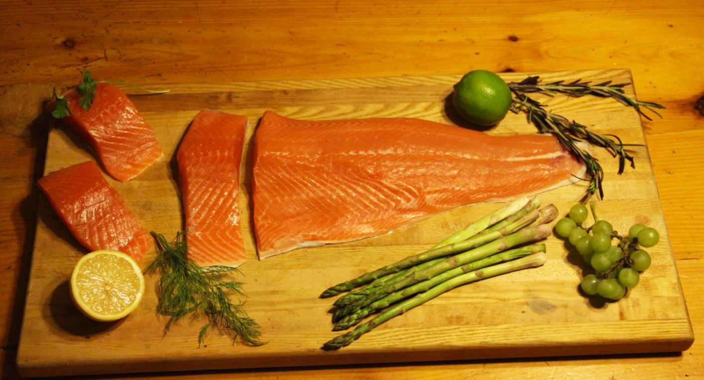 Is Salmon Raised On Land The Future Of